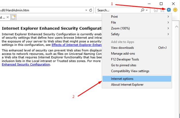 Proxy setting in Internet Explorer